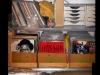 Thumbs 10 sacha 02  vinyl collection